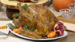 Boston Market Thanksgiving Meals