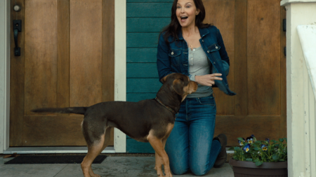 Ashley Judd A Dog's Way Home