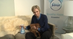 Jane Lynch Febreze Toast Meets World