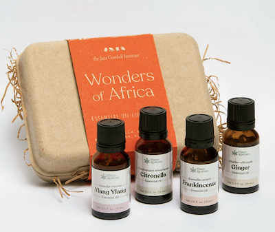 Wonders of Africa Essential Oil Kit from Forest Remedies