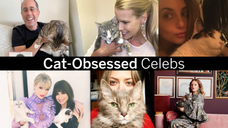 World Cat Day, International Cat Day, Cat, Cats, Felines, Miley Cyrus, Lea Michele, Drew Barrymore, Kourtney Kardashian, Norman Reedus, Taylor Swift, Alexa Ray Joel, Amanda Seyfried, Ed Sheeran, Howard Stern, Beth Stern, lifeminute, lifeminute.tv
